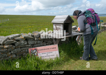 A walker buying eggs from a stall of farm produce for sale beside a footpath with an honesty box for payment. - Stock Photo