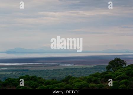 baobab, Central, Tanzania, Manyara, Lake Manyara, beauty, Africa - Stock Photo