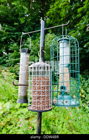 Squirrel-proof bird feeders with peanuts, nyger seed and mixed seeds. - Stock Photo