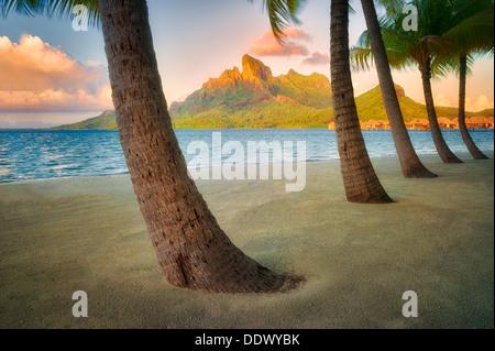 Sandy beach with palm trees and Mt. Otemanu. Bora Bora. French Polynesia.