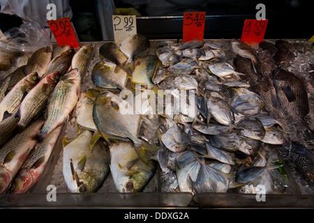 Fish chinatown new york new york usa stock photo for Empire fish market