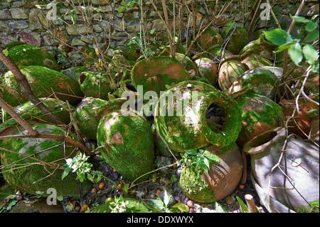 old stoneware amphorae formerly used for wine production, Telavi, Georgia - Stock Photo