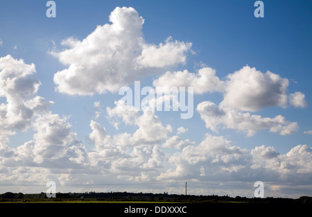White cumulus clouds in blue summer sky Suffolk, England - Stock Photo