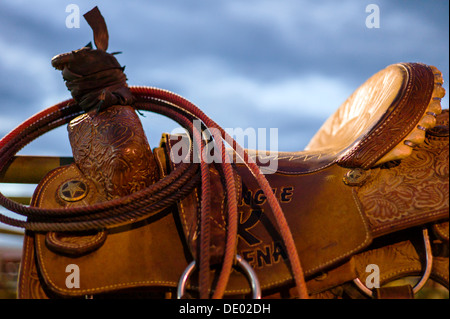 Close up of saddle, rope & tack on horse, Chaffee County Fair & Rodeo - Stock Photo