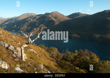 The mountains of eastern Knoydart over Loch Hourn, from the slopes of Druim Fada, near Arnisdale, Highland, Scotland, - Stock Photo