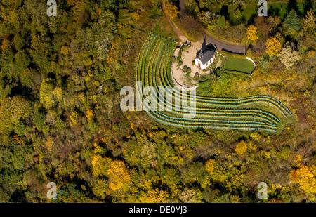 Aerial view, small chapel on Ellerweg lane surrounded by vineyards, autumn, Merzig, Saarland - Stock Photo