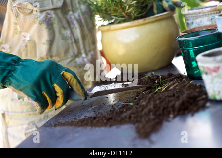 Gardening woman planting new plants in terracotta pots with a scoop of compost - Stock Photo