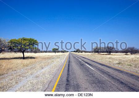 Straight road leading to the horizon, Botswana, Africa - Stock Photo