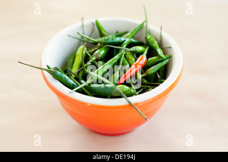 Bowl of Bird's eye chili peppers, green and red chillies, orange bowl. Neutral background. - Stock Photo