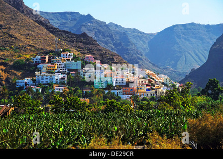 Village of La Calera and a banana plantation, Fei banana (Musa troglodytarum), Valle de Gran Rey Valley, La Gomera - Stock Photo