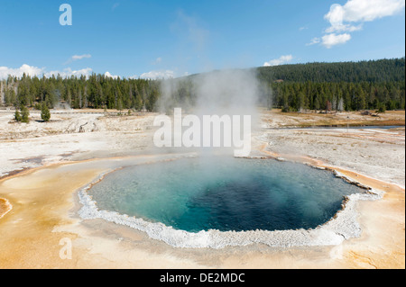 Hot spring, boiling water, steam, Crested Pool, Castle-Grand Area, Upper Geyser Basin, Yellowstone National Park, - Stock Photo