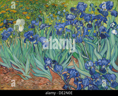 Irises; Vincent van Gogh, Dutch, 1853 - 1890; Saint-Rémy, France, Europe; 1889; Oil on canvas - Stock Photo