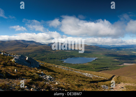 Loch Morlich and Rothiemurchus from Meall a Bhuachaille, Cairngorm National Park - Stock Photo