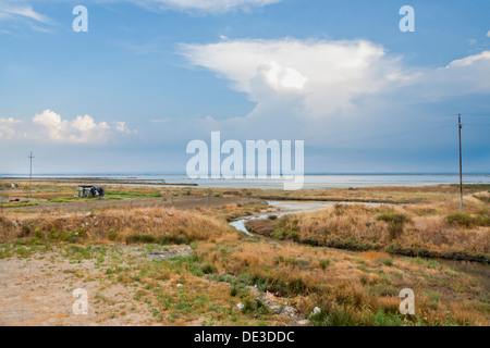 Stunning landscape with grasses saline and dramatic sky - Stock Photo