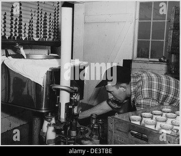 Landaff, Grafton County, New Hampshire. Pasturizing and bottling at Mr. George Clement's farm. He an . . . 521497