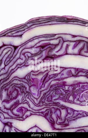 A macro close up of a nutritious, healthy, tasty and appetizing red cabbage sliced in half - Stock Photo