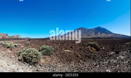 Lava field, Mt Teide volcano at back, Teide National Park, UNESCO World Heritage Site, El Jaral, Tenerife, Canary - Stock Photo