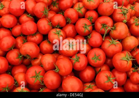 Tomatoes on a market stall, weekly farmer's market, Muğla, Muğla Province, Aegean region, Turkey - Stock Photo
