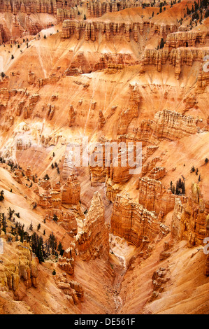 Cedar Breaks National Park - Stock Photo