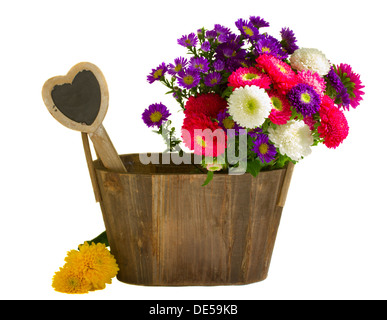aster flowers in wooden pot - Stock Photo