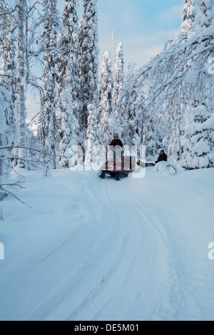 A snowmobile tracks through the frozen forests of northern Finland in deep winter - Stock Photo