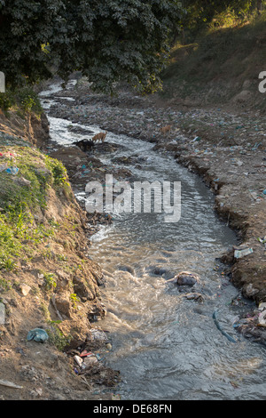 India, Uttar Pradesh, Agra, pollution in stream that flows into Yamuna river at Taj Mahal - Stock Photo