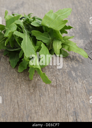 tied bunch of fresh arugula, on wooden table - Stock Photo