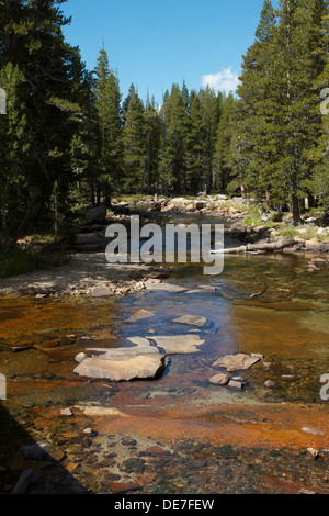 The Tuolumne river flowing through Tuolumne Meadows  in Yosemite National Parks high country - Stock Photo