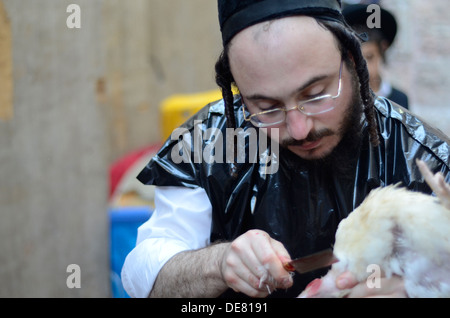 Kosher Chicken slaughter by a Shohet of the ultra religious Neturei Kata sect, Jerusalem, Israel - Stock Photo