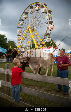 Chatham, New York - A boy watches as Ralph Hartzell demonstrates his oxen to visitors at the Columbia County Fair. - Stock Photo