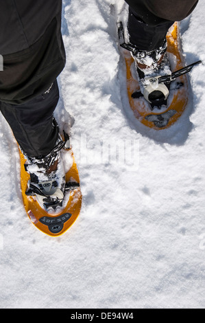 Close up of walker wearing snowshoes on feet while snowshoeing in deep powder snow in winter - Stock Photo
