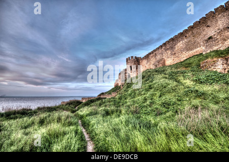 Citadel on the Dniester estuary. Old fortress in town ...