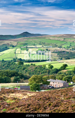 Shutlingsloe Viewed Over Roach End, The Roaches, Peak District National Park, Staffordshire, England, UK - Stock Photo