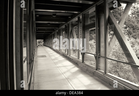 Long perspective of covered wood pedestrian bridge or walkway in black and white.  narrowing into the distance. - Stock Photo