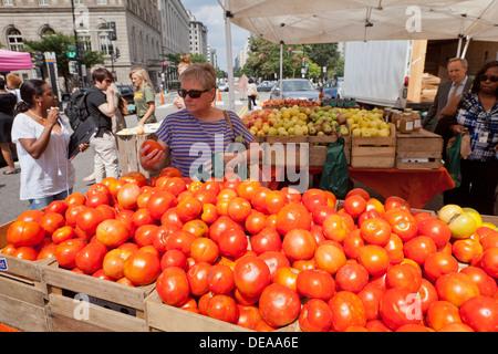 Woman buying fresh tomatoes at farmers market - Washington, DC USA - Stock Photo