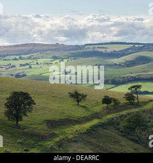 The view across the rolling Shropshire countryside from the Long Mynd - Stock Photo