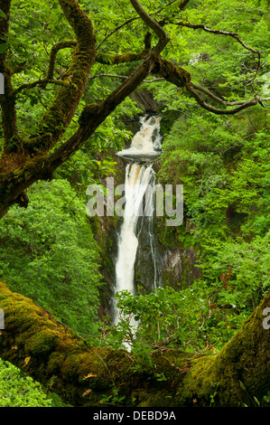 Mynach Falls, Devil's Bridge, Ceredigion, Wales - Stock Photo