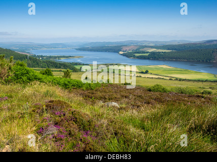 DORNOCH FIRTH FROM STRUIE HILL ON A JULY MORNING SUTHERLAND SCOTLAND LOOKING TOWARDS BONAR BRIDGE - Stock Photo