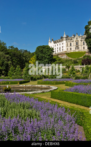 DUNROBIN CASTLE GOLSPIE SUTHERLAND SCOTLAND WITH POND AND BLUE CATMINT FLOWERS - Stock Photo