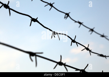 Barbed wire against a blue sky, selective focus - Stock Photo