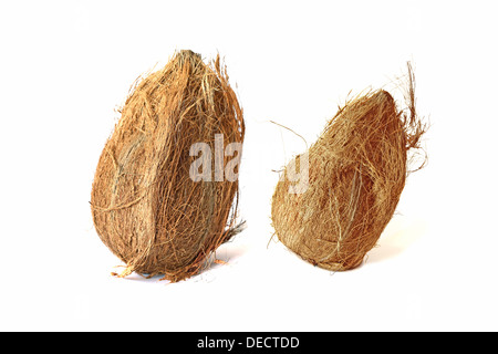 Two coconuts isolated on white backgrounds - Stock Photo