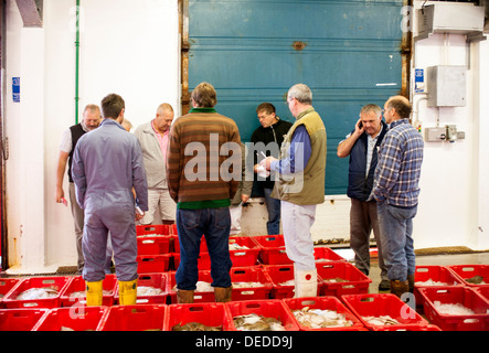 Newlyn Fish Auction in Cornwall - Stock Photo