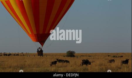 Hot Air Balloon Safari in Masai Mara, Kenya, Africa - Stock Photo
