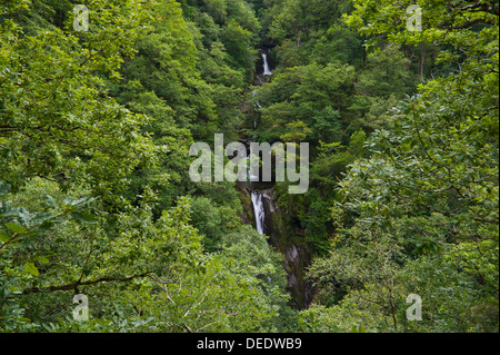 Waterfall viewed from the Nature Trail on the Jacob's Ladder footpath below Devil's Bridge near Aberystwyth Ceredigion - Stock Photo