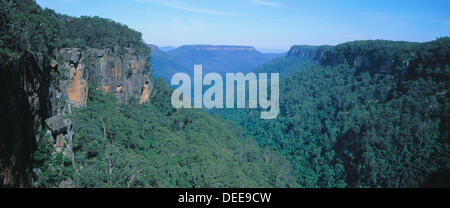 Great dividing range with eucalyptus trees. Australia - Stock Photo