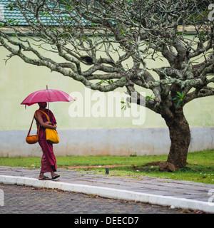 Buddhist monk at Sri Maha Bodhi in the Mahavihara (The Great Monastery), Sacred City of Anuradhapura, UNESCO, Sri - Stock Photo