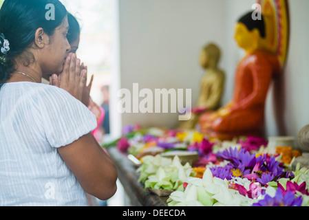 Buddhist woman praying at Sri Maha Bodhi in the Mahavihara (The Great Monastery), Anuradhapura, Sri Lanka, Asia - Stock Photo
