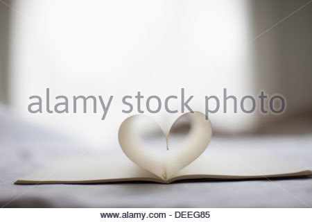 pages of notebook form heart-shape - Stock Photo