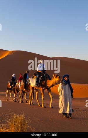 Tourists on camel safari, Sahara Desert, Merzouga, Morocco, North Africa, Africa - Stock Photo