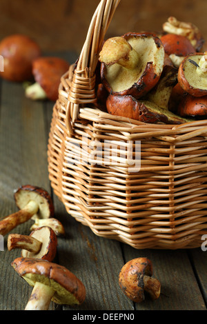 fresh wild mushrooms in a basket, food close up - Stock Photo